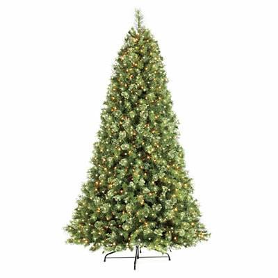 post 146 tree 3