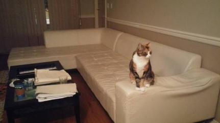post 406 sofa 1
