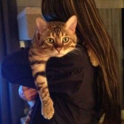 post 446 cat 3