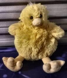 post 503 chick 2