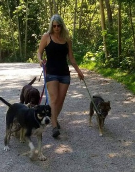 post 558 dog walk 1